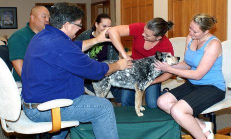Alumni - Staying Involved - Animal Chiropractic - Wellsville, KS